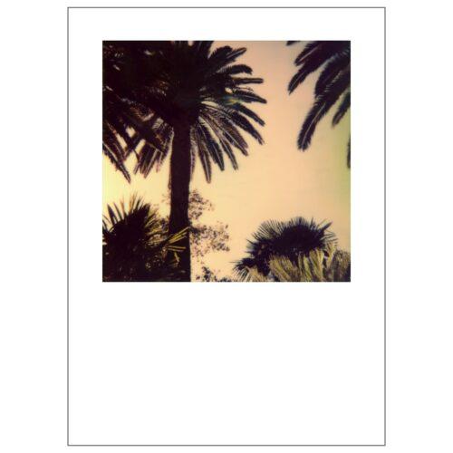 Carolina_Lopez_Ares_Contemporary